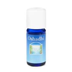 Encens Oliban 10ml